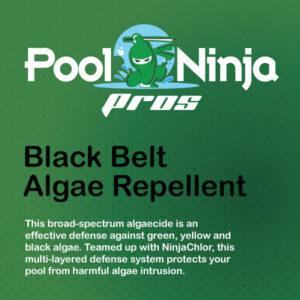 Black-belt-algae-repellent-swimming-pool-chemicals-for-sale-near-me