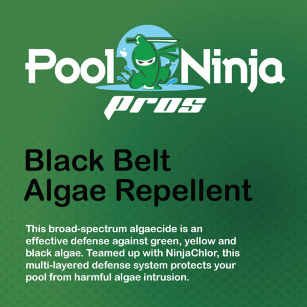 Black-belt-algae-repellent-swimming-pool-chemicals-for-sale-near-me
