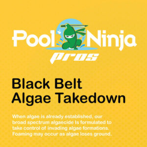 Black-belt-algae-takedown-swimming-pool-chemicals-for-sale-near-me