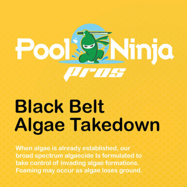 Black-belt-algae-takedown-swimming-pool-chemicals-for-sale-near-me
