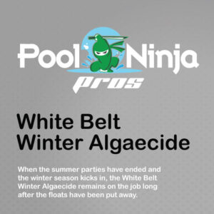 White-belt-winter-algaecide-swimming-pool-chemicals-for-sale-near-me